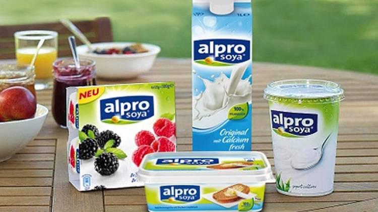 joghurt für den darm