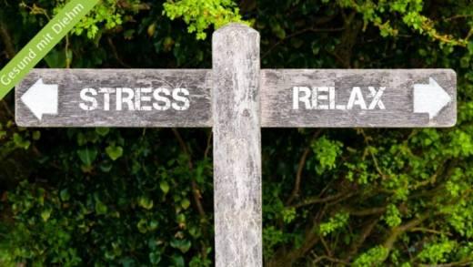 Stress – mal anders gesehen